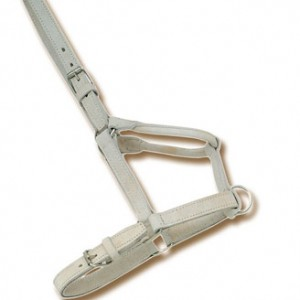 Chrome Halter
