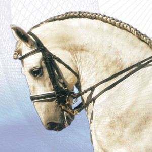 Zaldi Weymouth Bridle with French Noseband
