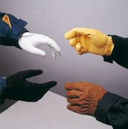 ZaldiAmara Glove